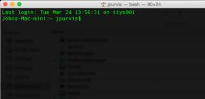 The OS X Terminal3