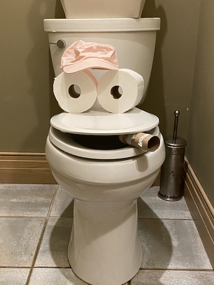 """My 8 year old daughter just yelled """"Oh no the toilet is smoking!!"""" My wife and I ran to the bathroom to find this. It's just day 4 of home school. @MatthewBerryTMR 2020-03-20 at 9.17.52 AM"""